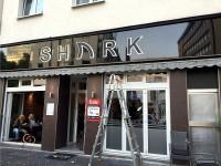 Shark 2 Acryl
